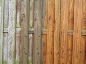 Fence & Deck Power Washing and Pressure Washing in Myrtle Beach.